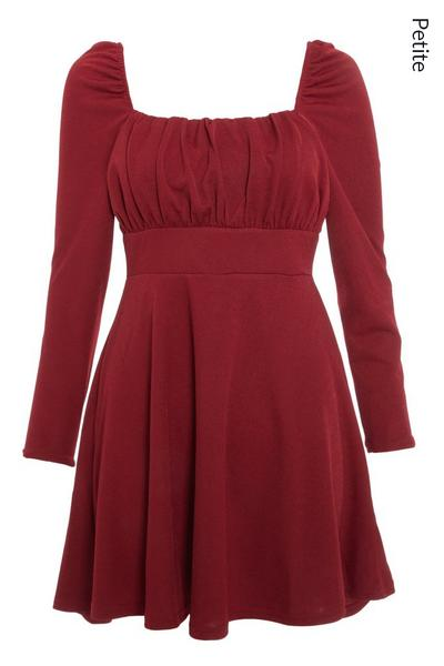 Petite Berry Ruched Skater Dress